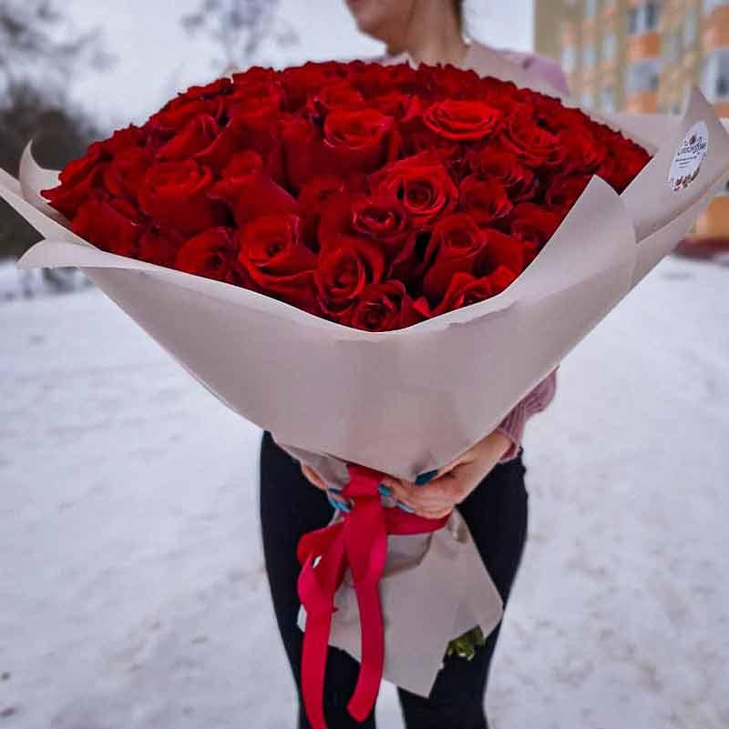 101roza_krasnaya (3)