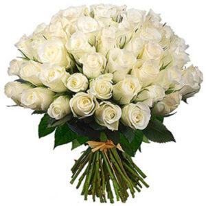 Букет 51 роза белого цвета
