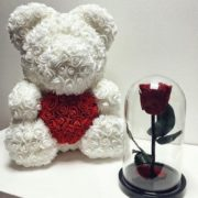 misha_iz_roz (4)