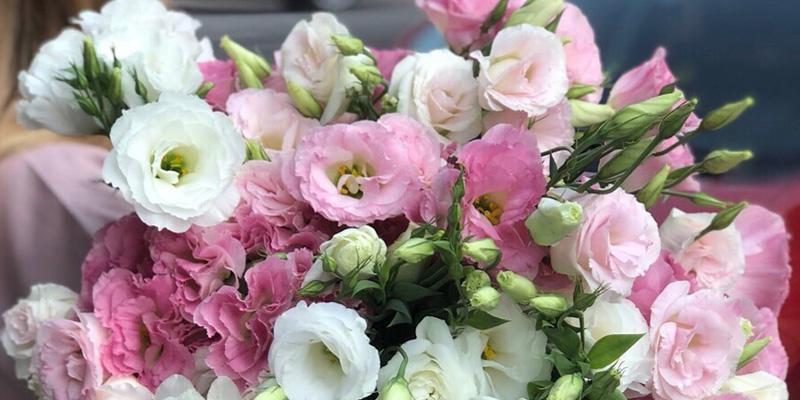 Цветы для Весов