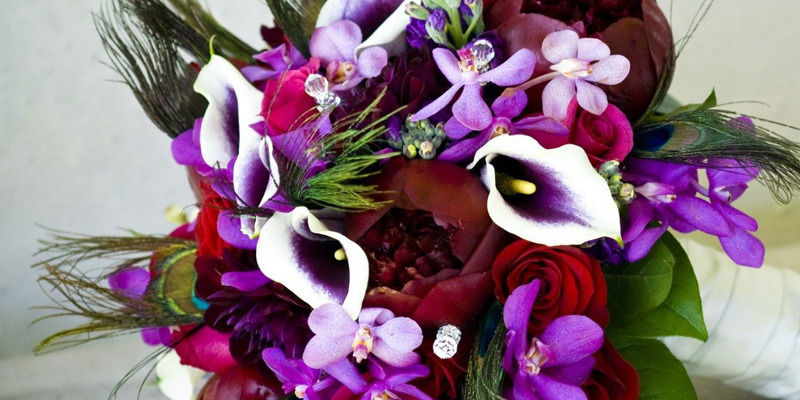 Цветы для Стрельцов